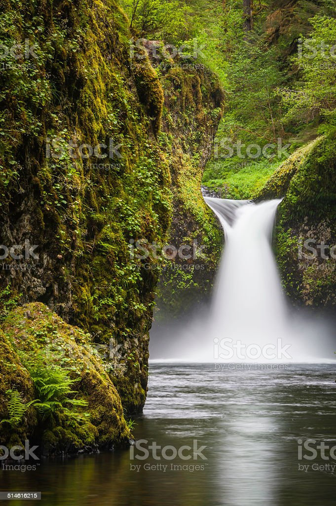 Idyllic waterfall in green rainforest Punchbowl Falls Oregon stock photo