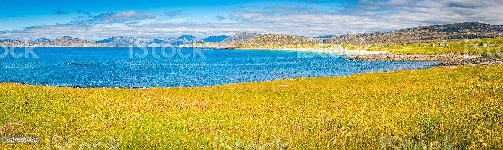 Idyllic wildflower meadow overlooking blue ocean beaches mountains Hebrides Scotland stock photo