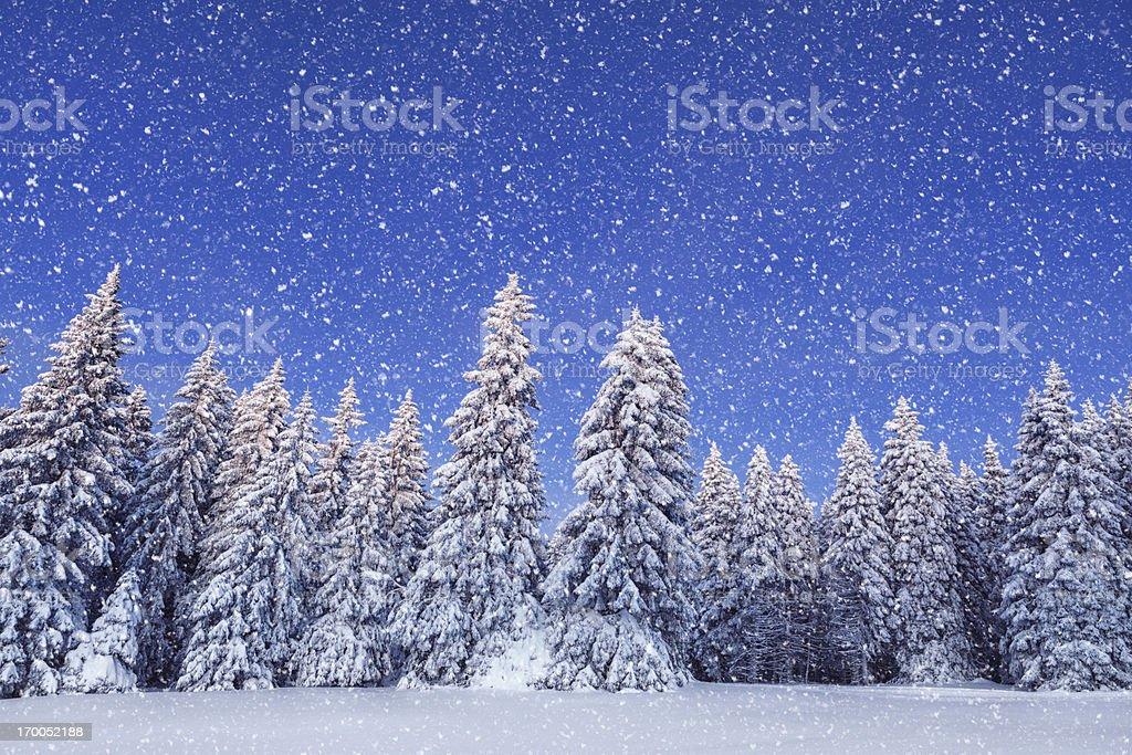 Idyllic Winter Day royalty-free stock photo