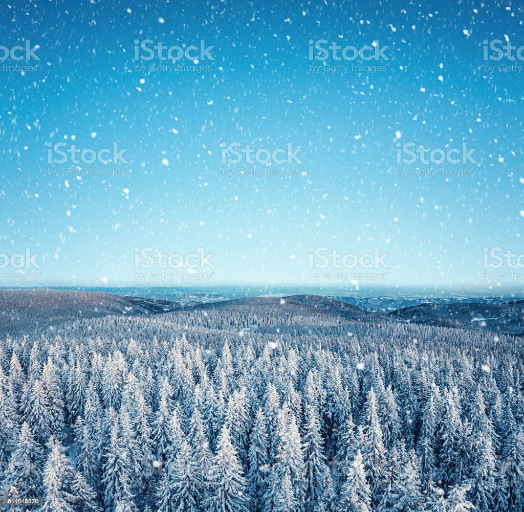 Idyllic Winter Day stock photo