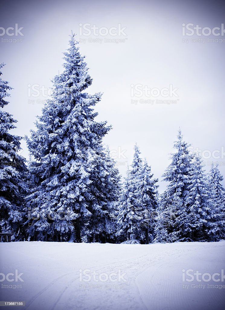 Idyllic winter royalty-free stock photo