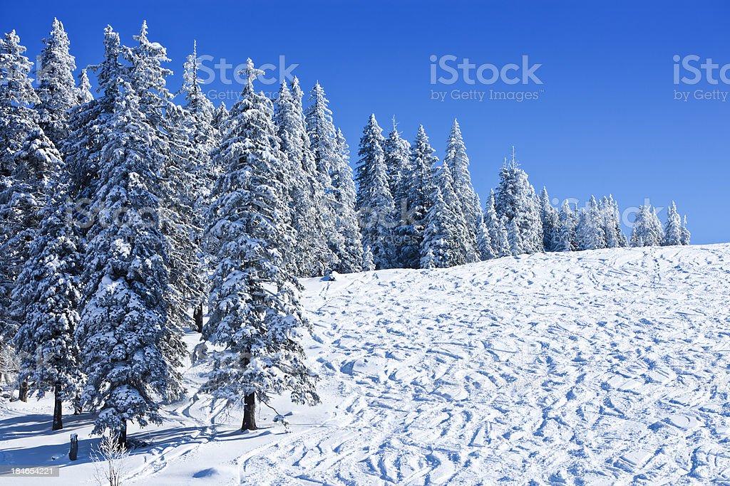 Idyllic winter ski slope royalty-free stock photo