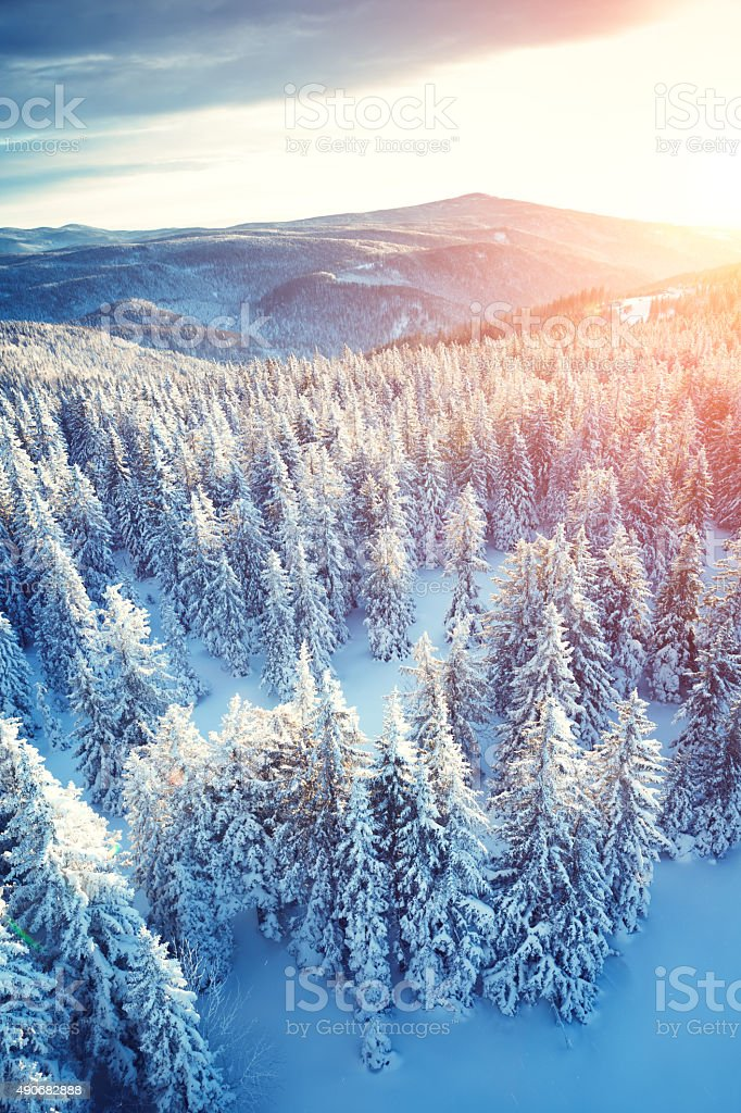 Idyllic Winter Sunrise stock photo