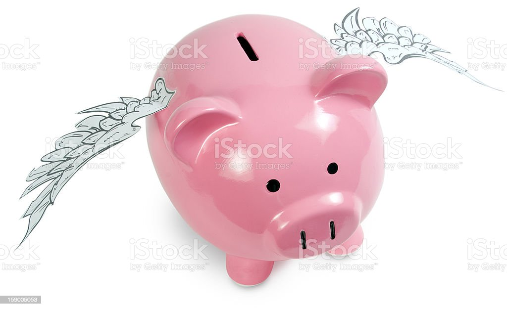If Pigs Could Fly royalty-free stock photo