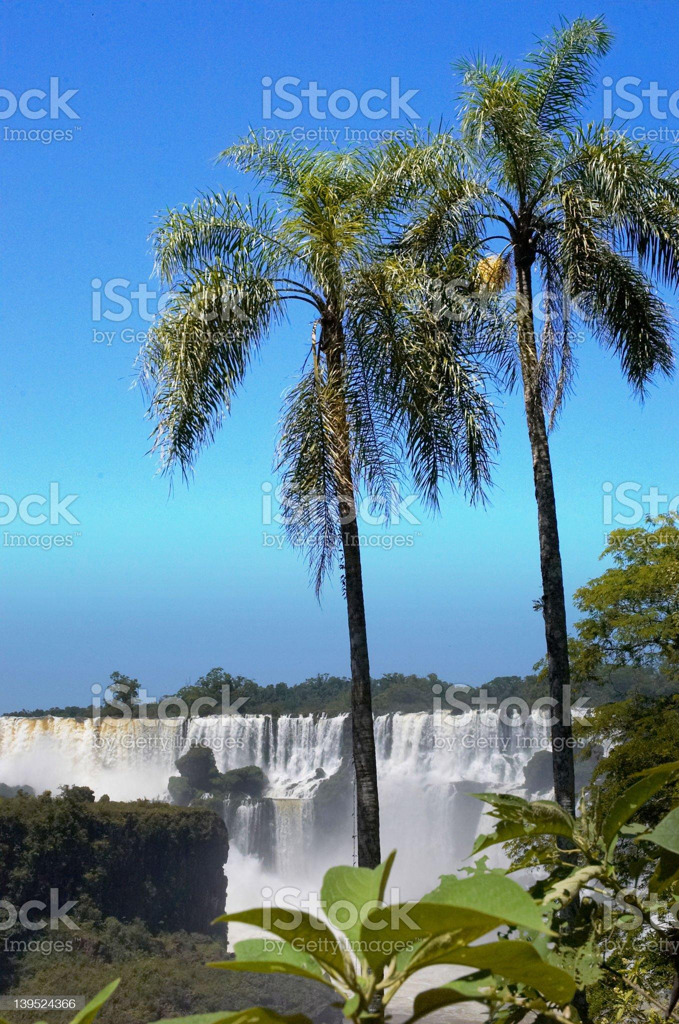 Iguazzu Falls 3 royalty-free stock photo