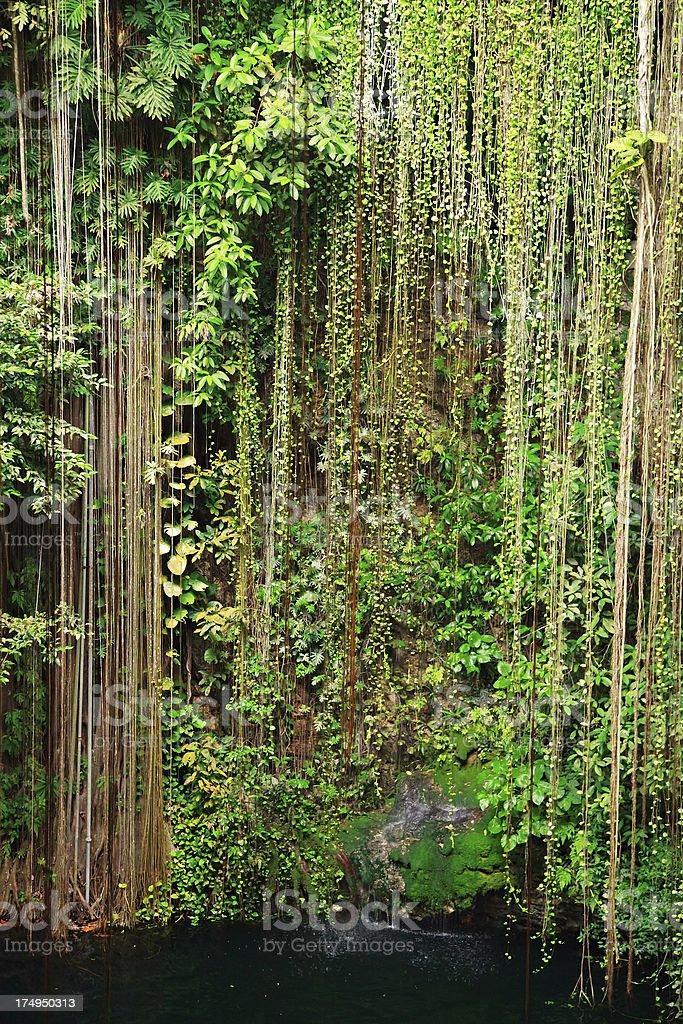 Ik Kil Cenote, Mexico royalty-free stock photo