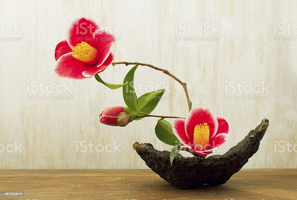 ikebana on a atable stock photo