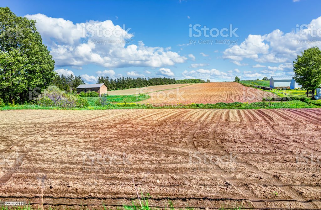 Ile D'Orleans landscape with brown raked field furrows in summer for potatoes and farm house stock photo