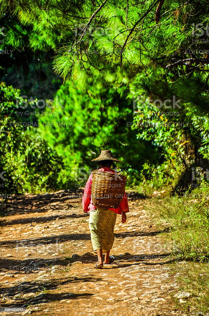 ill tribe lady heading to the forest stock photo