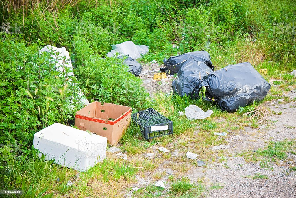 Illegal dumping in the nature stock photo
