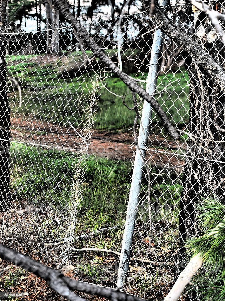 Illegal Fence Opening Of Security Fence In Dramatic Colors stock ...