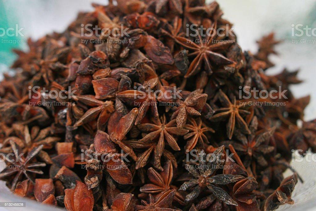 Illicium anise tree species stock photo