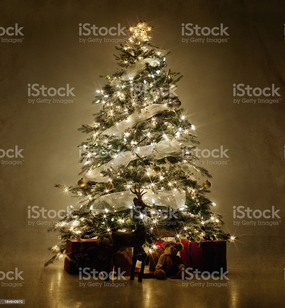 Illuminated Christmas tree at night stock photo