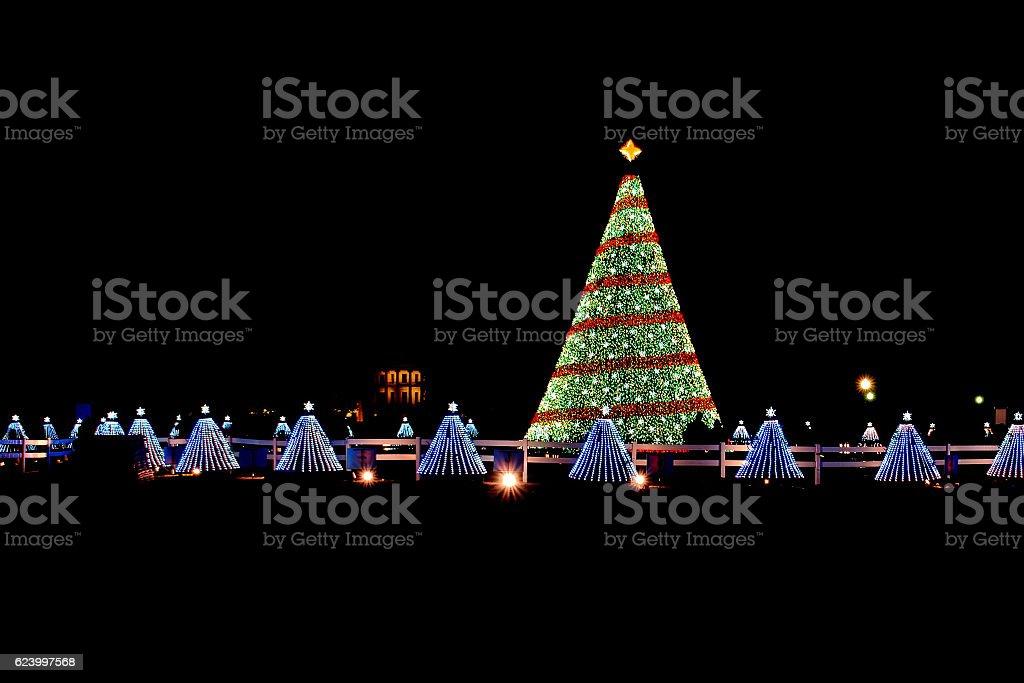 Illuminated Christmas tree lights at night stock photo