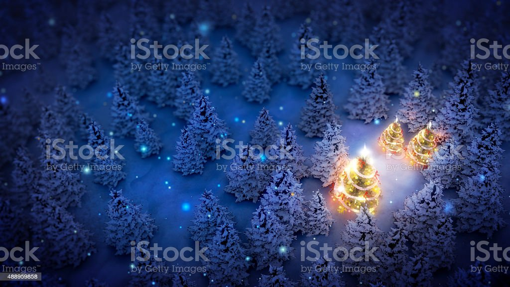 illuminated christmas trees in pine woods stock photo