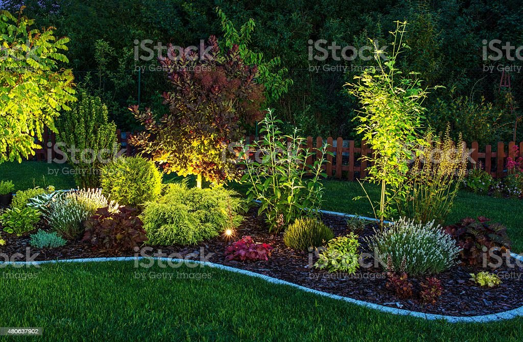 Illuminated Garden stock photo