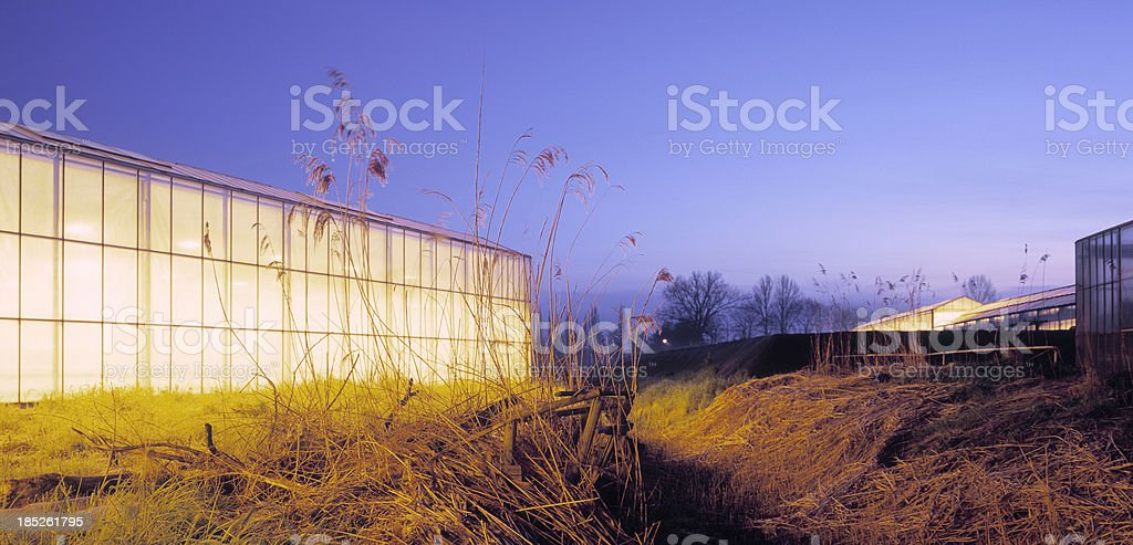 Illuminated greenhouse at dawn royalty-free stock photo