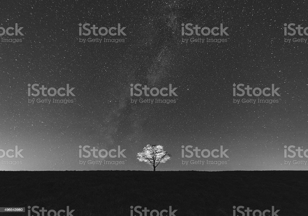 Illuminated in Night stock photo