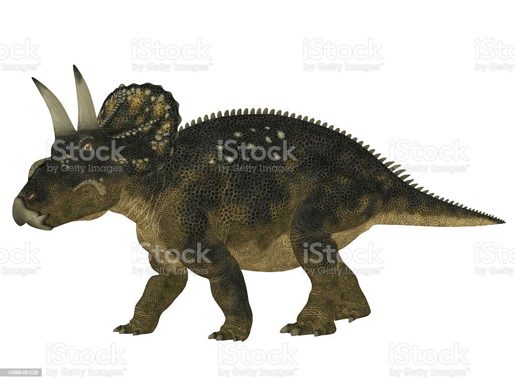 Illustration of a Nedoceratops stock photo