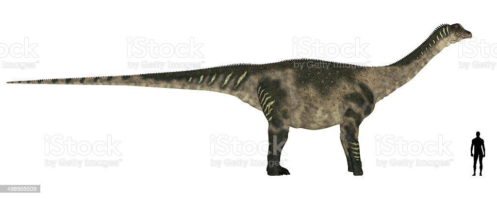 Illustration of an Antarctosaurus vs Human size comparison stock photo