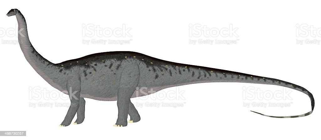 Illustration of an Apatosaurus stock photo