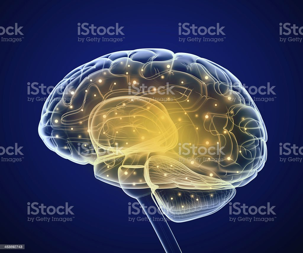 Illustration of brain with areas lit up stock photo