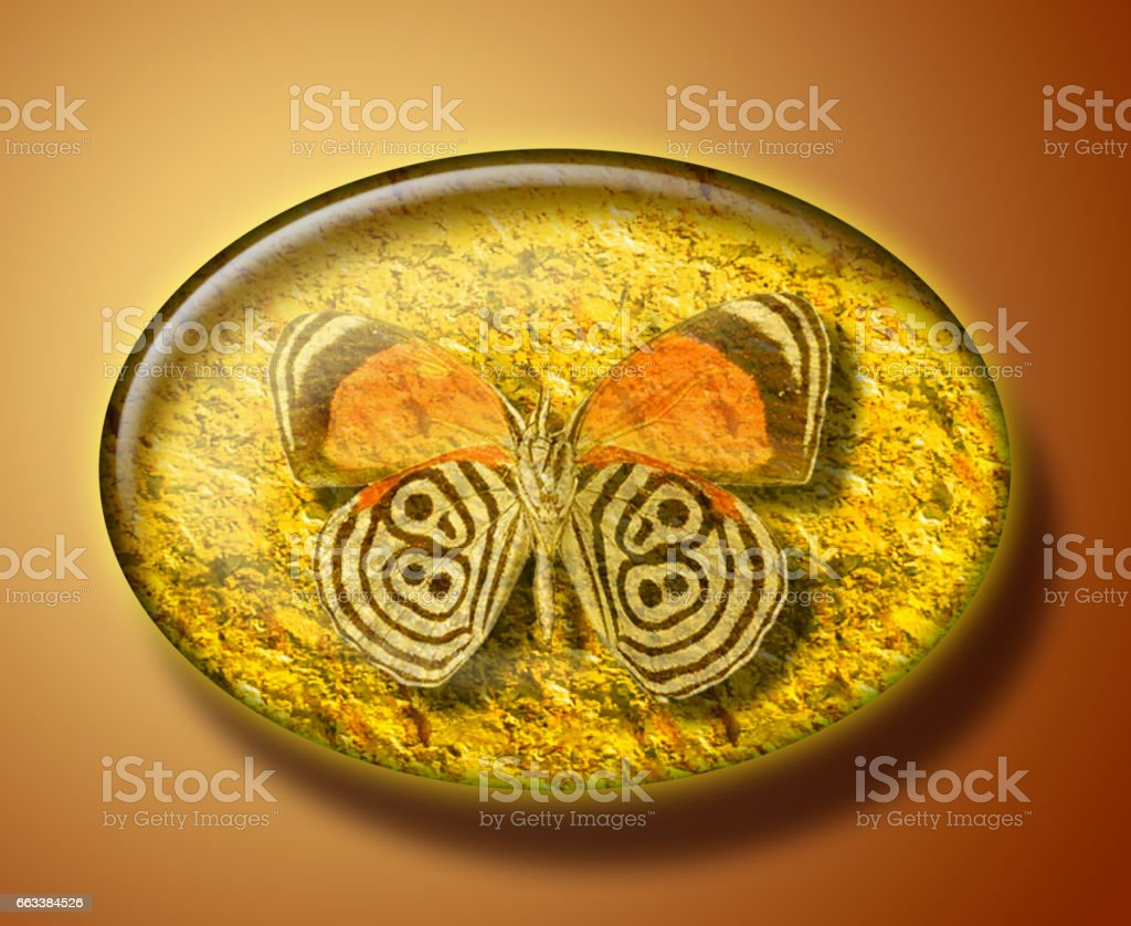 Illustration of  butterfly in succinct, amber stone. Archeological artifact, specimen, discovery. stock photo