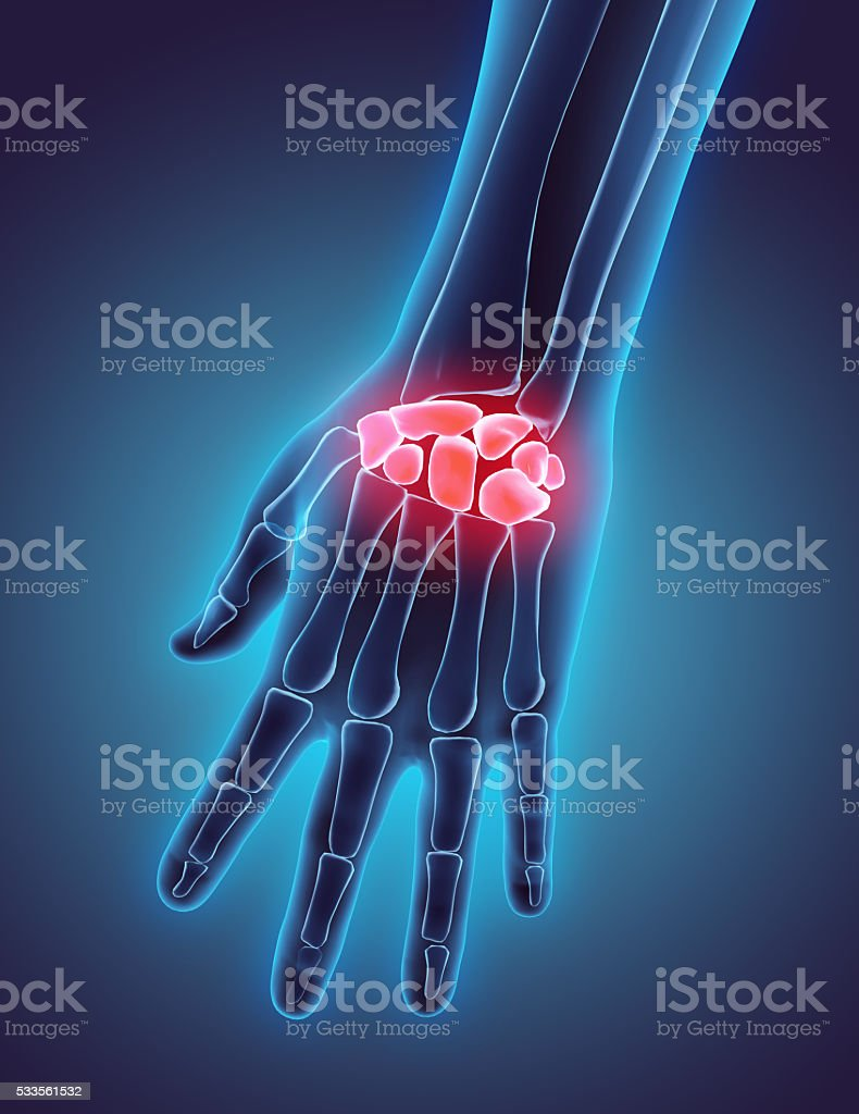 3D illustration of Carpal, medical concept. stock photo