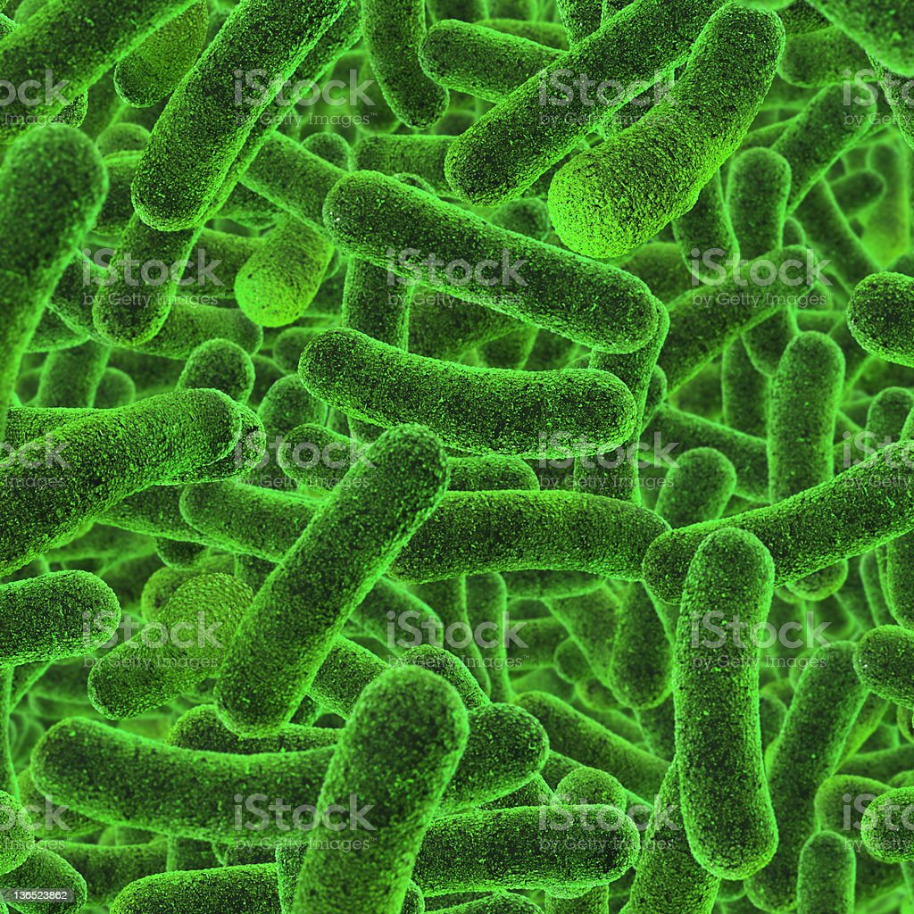 Illustration of microscopic bacteria stained in green stock photo