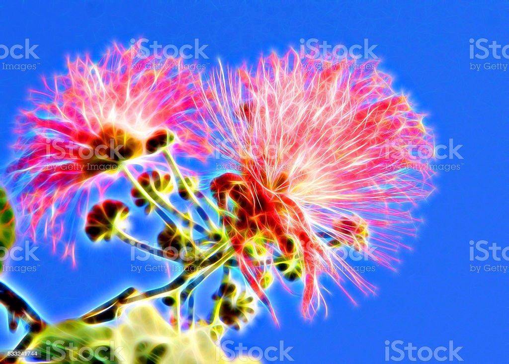 Illustration pink flowers fig tree stock photo