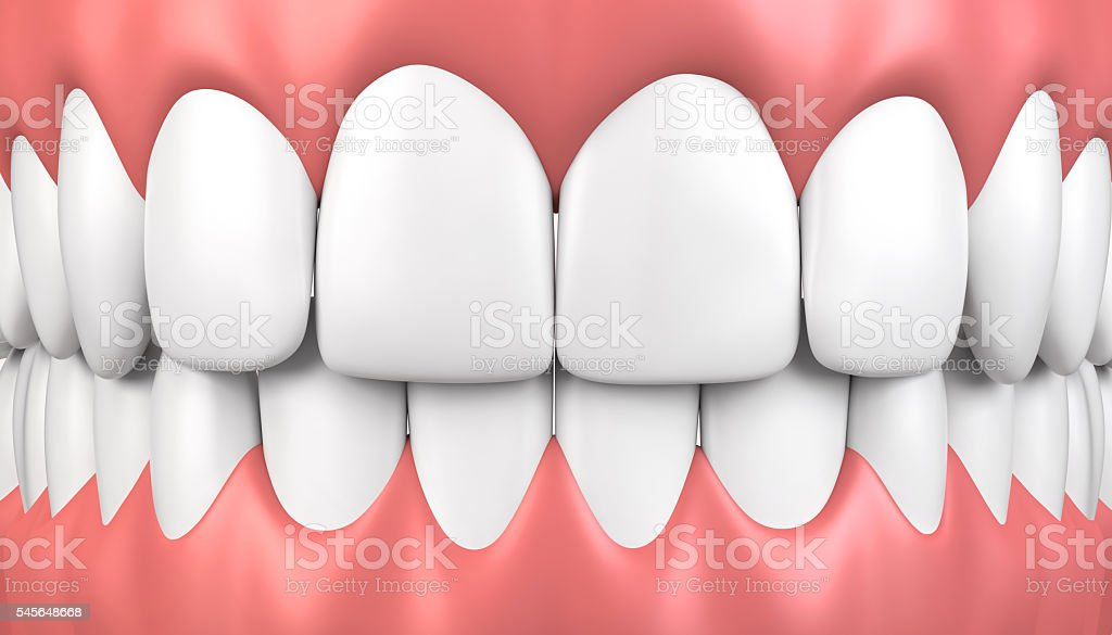 3D illustration teeth and gum model. stock photo