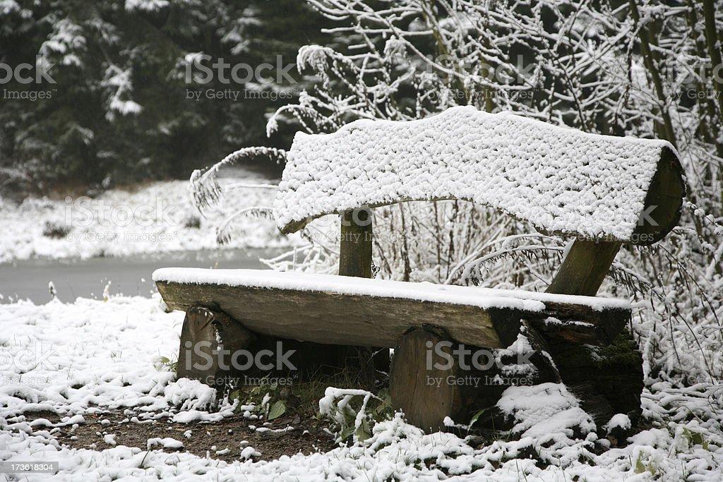 Im Wald stock photo