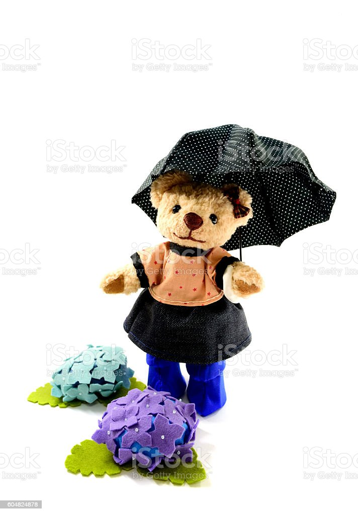Image in the rainy season stock photo