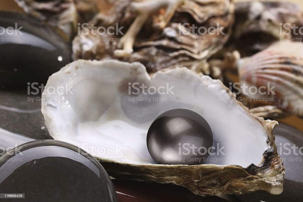 Image of a black pearl in the shell royalty-free stock photo