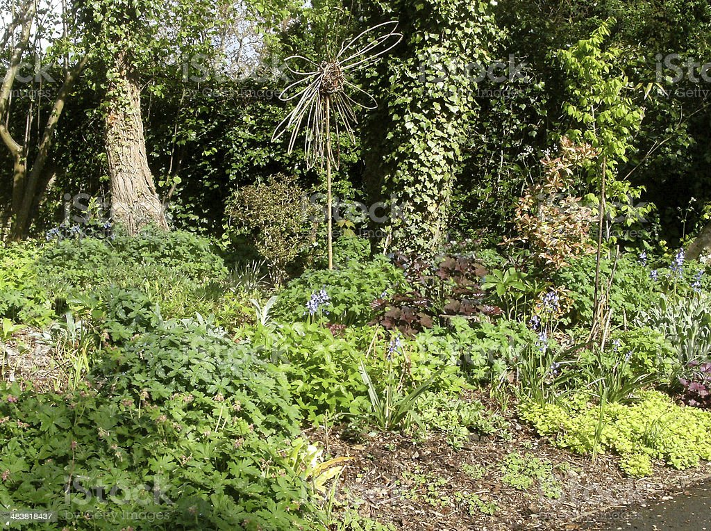 Image of a Cottage Garden Herbaceous Border stock photo