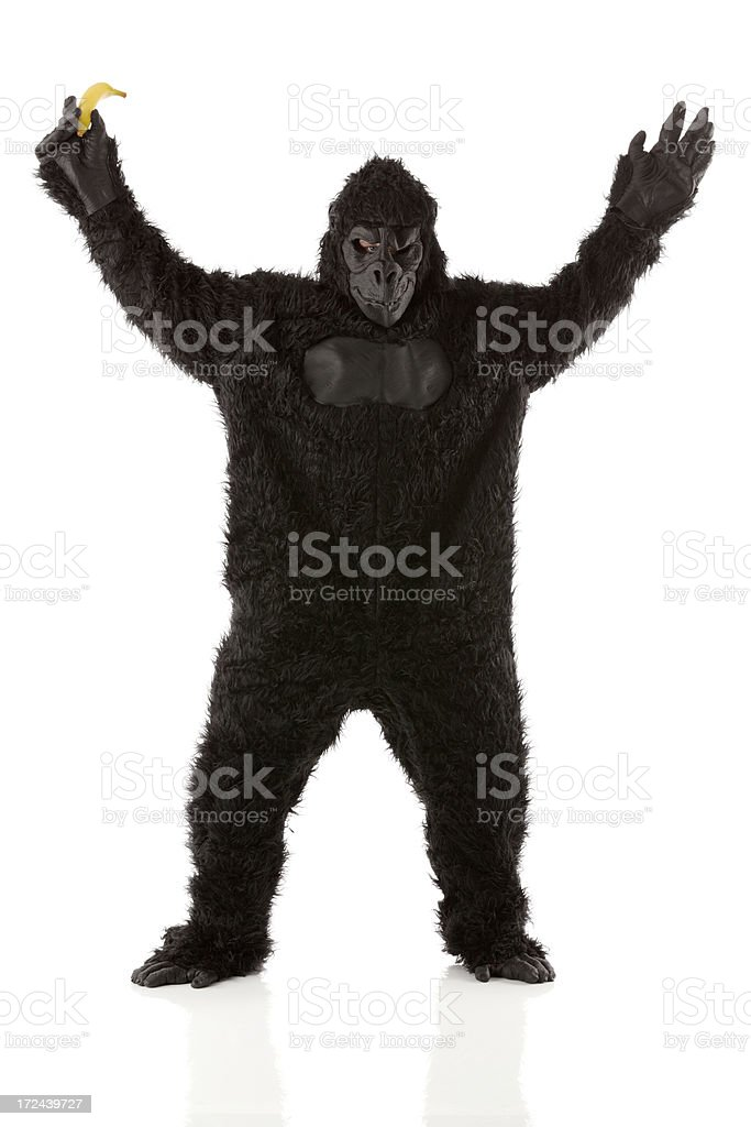 Image of a gorilla with banana royalty-free stock photo