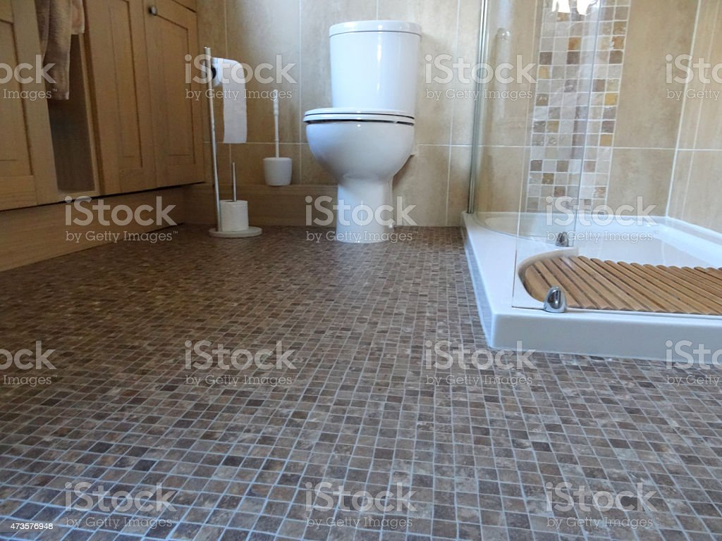 Image of bathroom / shower room with toilet, mosaic vinyl flooring stock photo