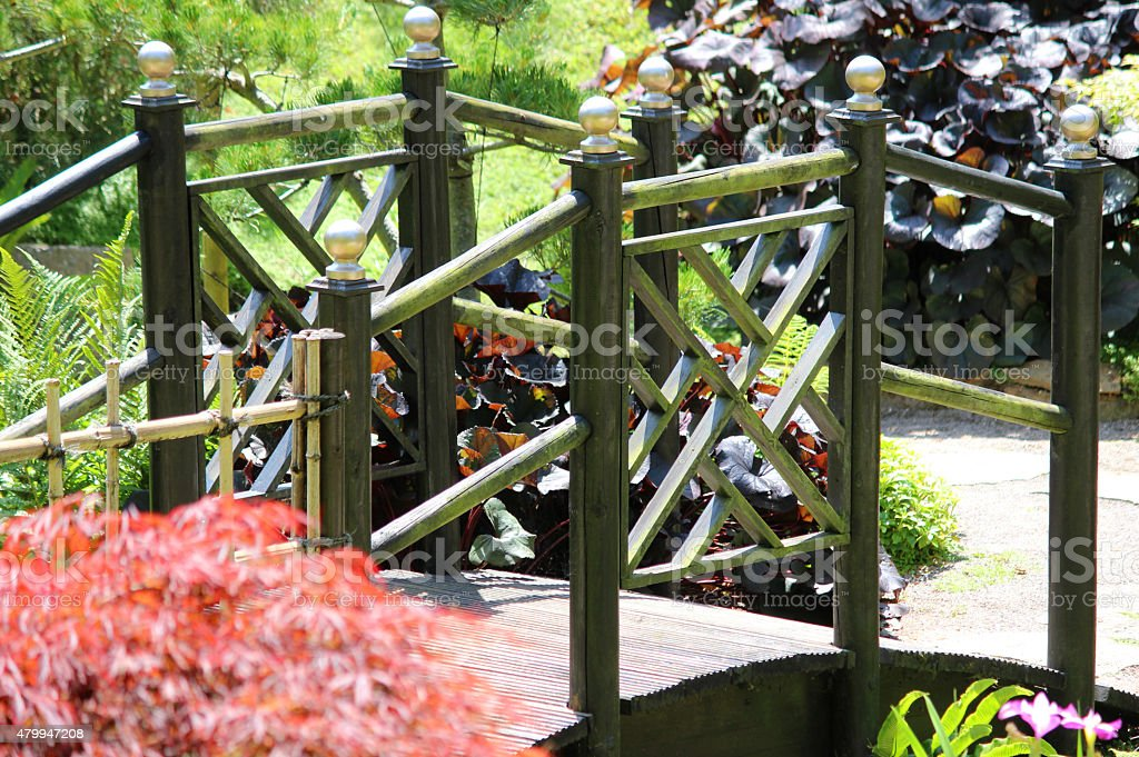 Image of black wooden Japanese bridge in garden with maples stock photo