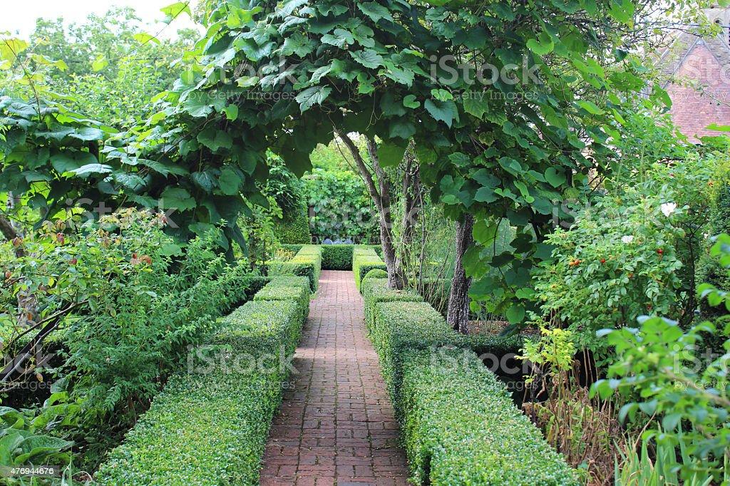 Image of box / boxwood hedging (buxus hedge), brick paving pathway stock photo