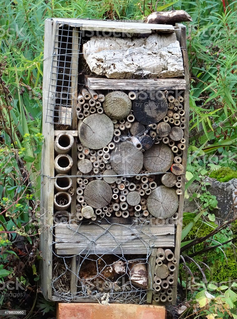 Image of bug hotel / house for insects in wildlife garden stock photo