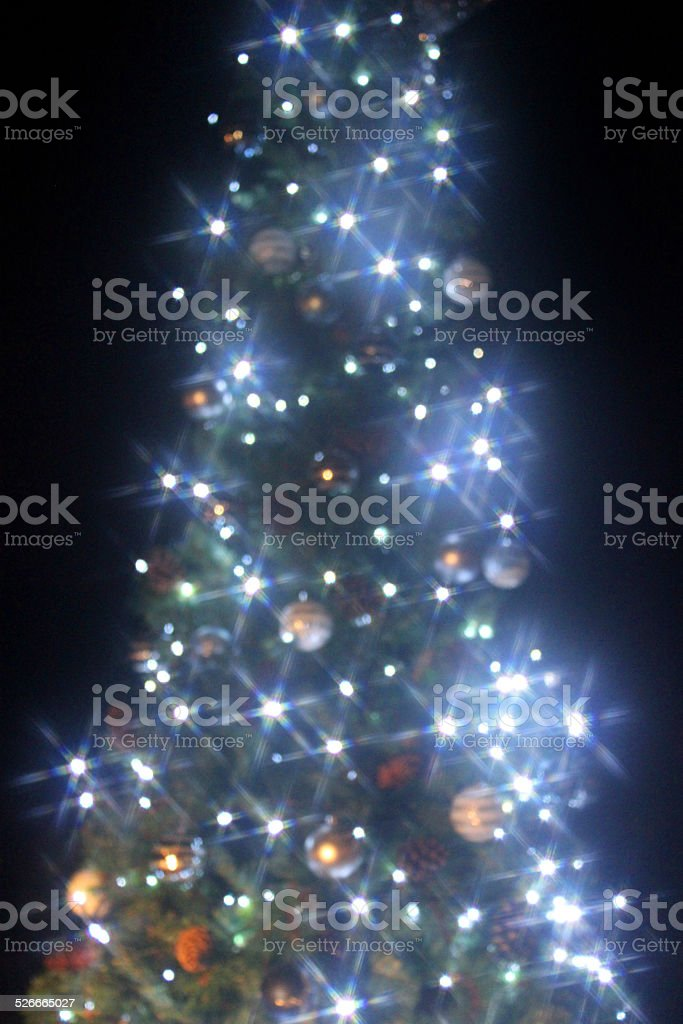 Image of Christmas tree star-filtered, white-led fairy-lights, night background, bokeh stock photo
