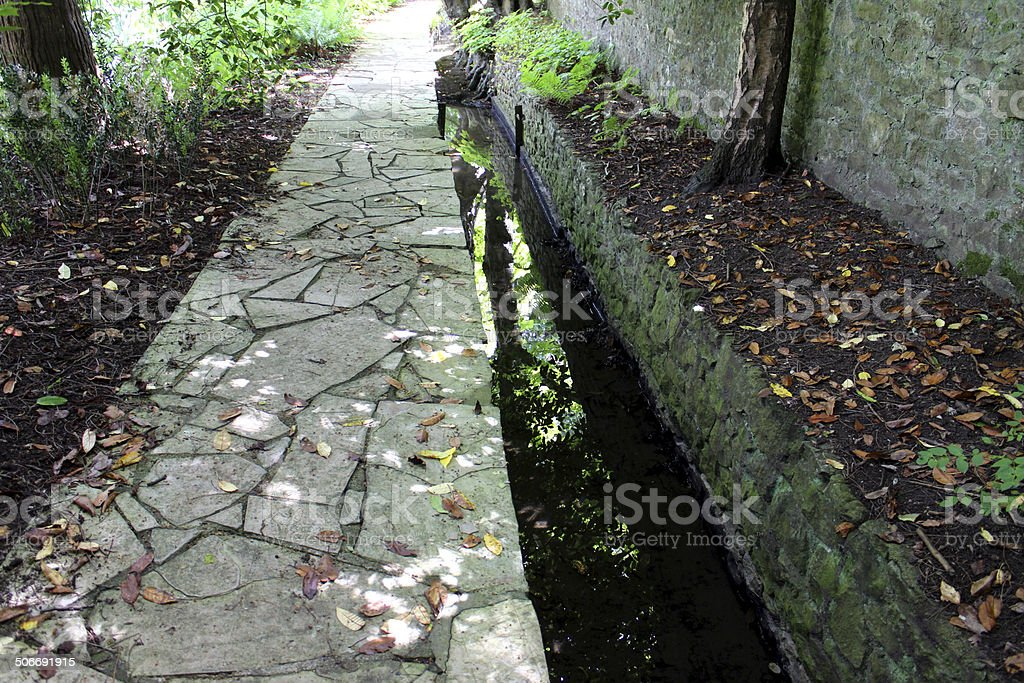 Image of crazy paving pathway by stream, shady woodland garden stock photo