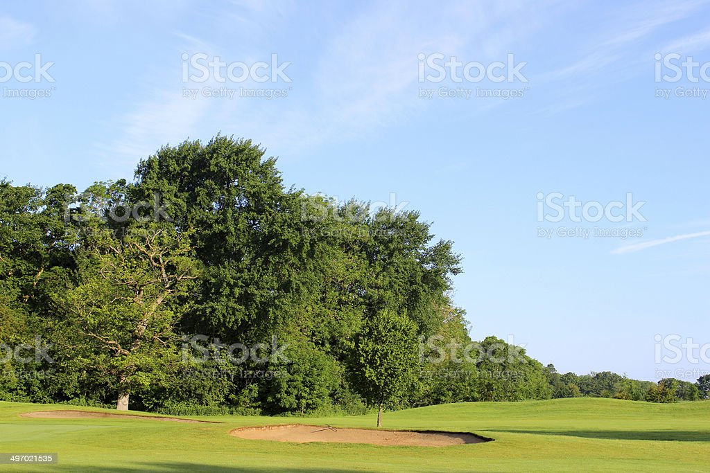 Image of deciduous trees forming boundary / hazard at golf course stock photo