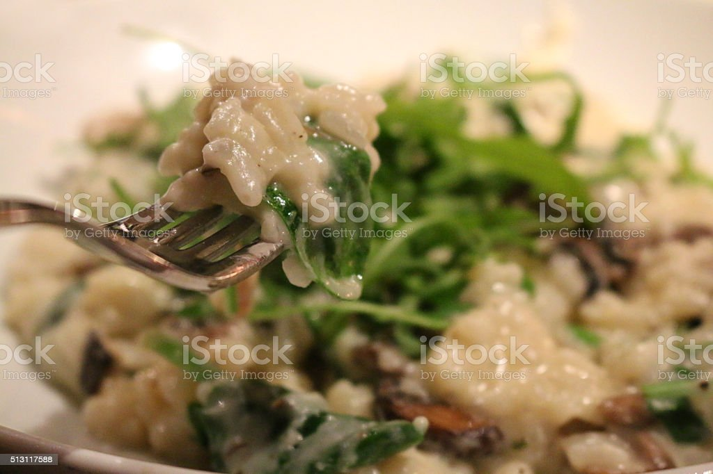 Image of forkful of chicken and mushroom risotto over white-dish stock photo