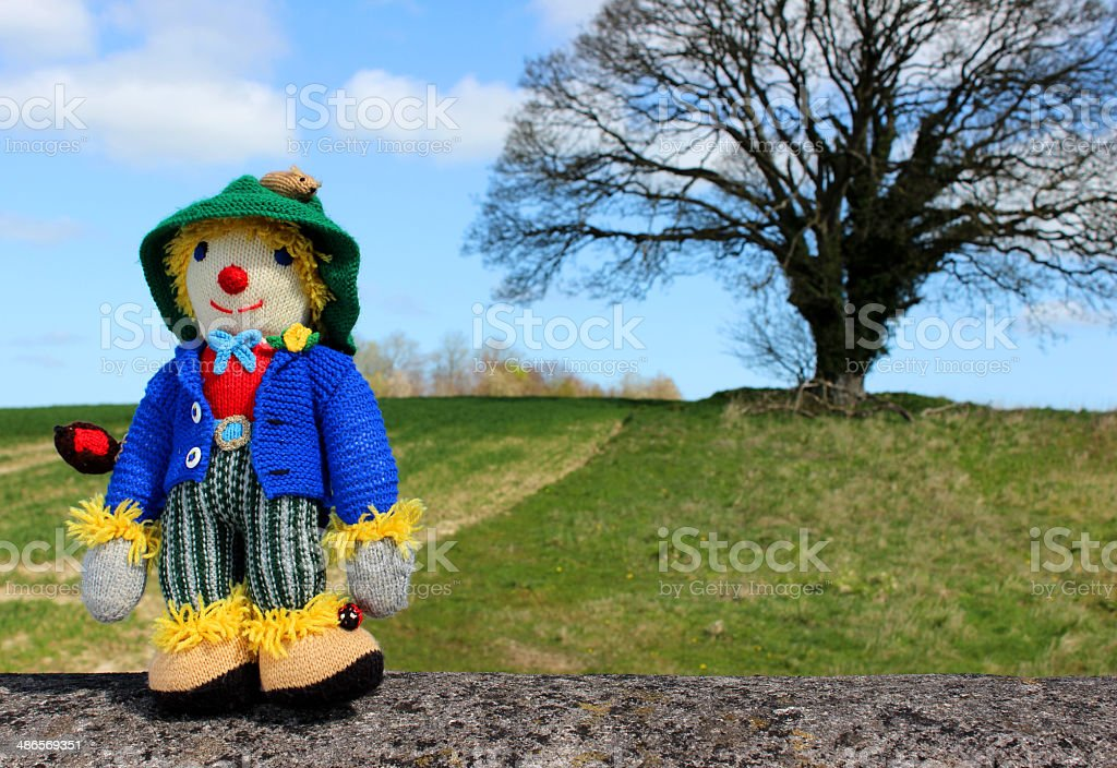 Image of friendly knitted scarecrow toy against field background stock photo