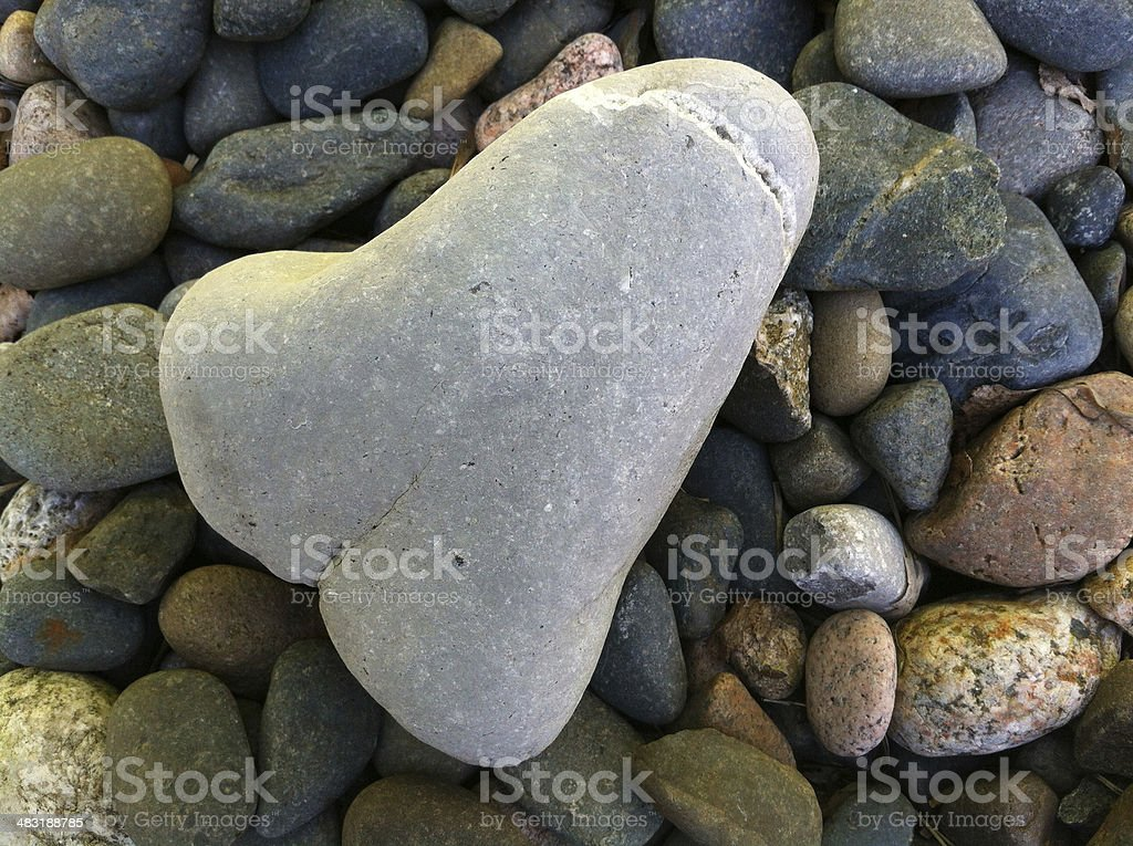 Image of funny rude pebble, shaped like a penis stock photo