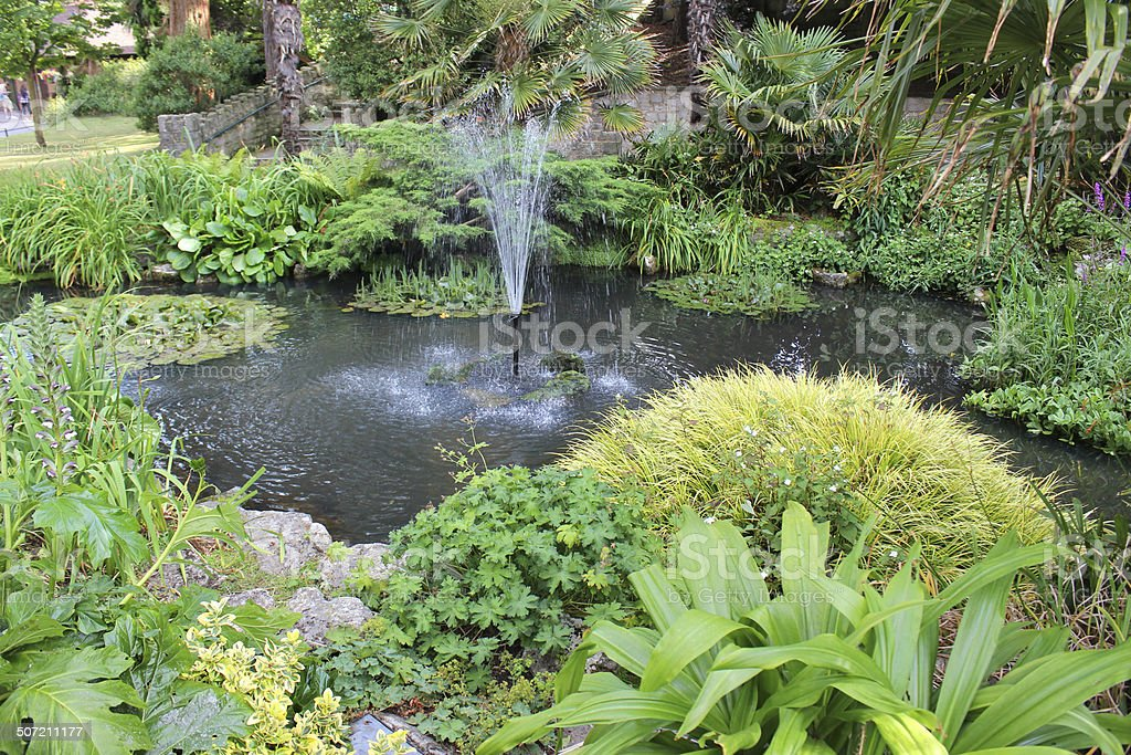 Image of garden pond with fountain, water lilies, flowers stock photo