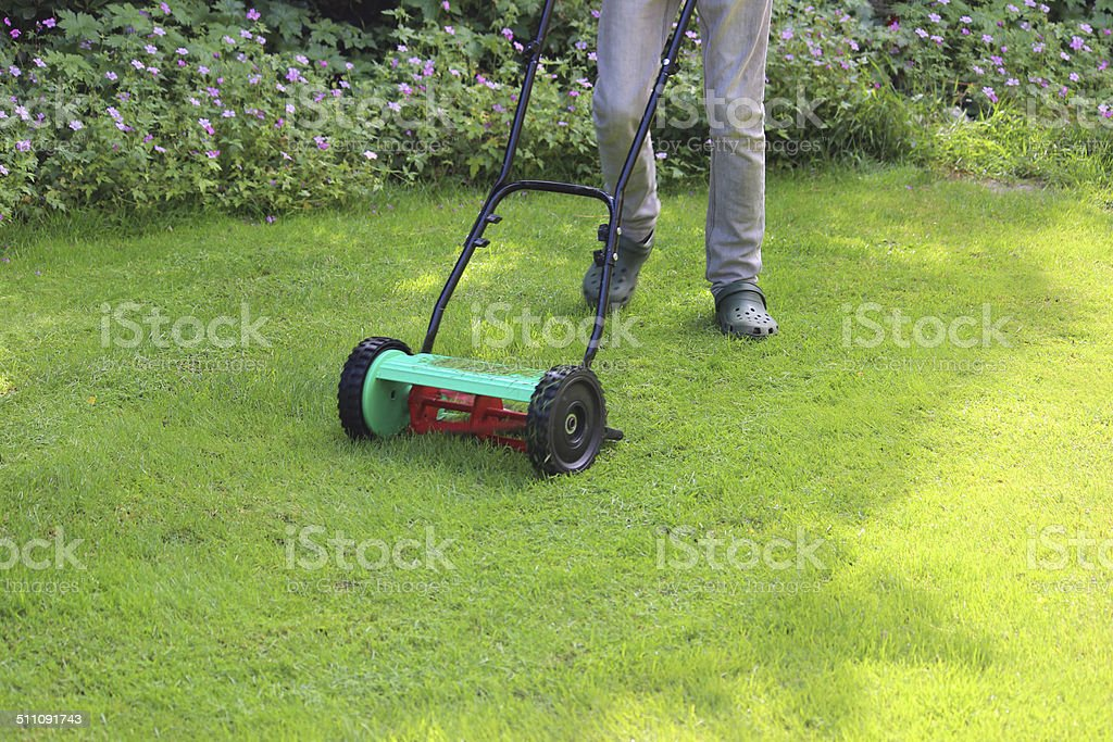 Image of gardener mowing lawn with push lawnmower, cylinder mower stock photo