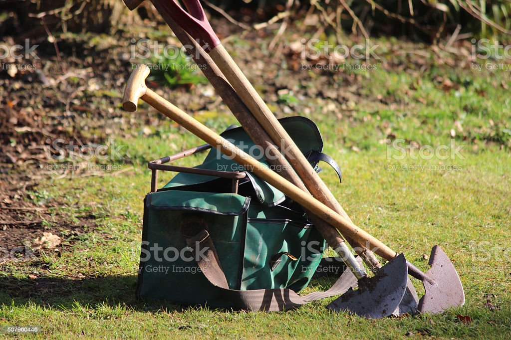 Image of gardener's gardening tools on garden lawn, spades, bag stock photo