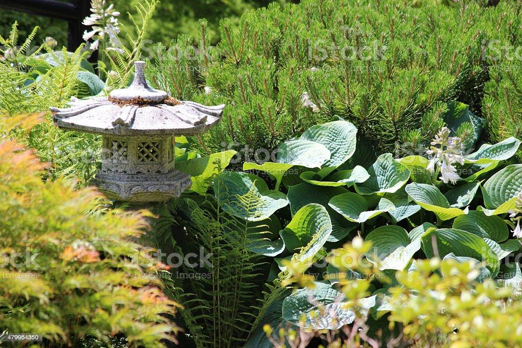 Image of granite rankei lantern in Japanese garden, hostas, pines stock photo